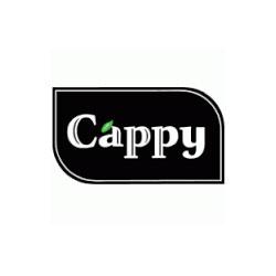 Безалкохолна напитка Капи
